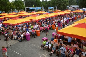 4-daagse Nijmegen 2014