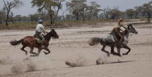 Het Amboseli Avontuur - safari te paard in Tanzania