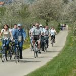 Nederlanders doen toerisme in Vlaams-Brabant groeien