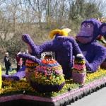 Bloemencorso bollenstreek; 1 miljoen bezoekers uit binnen- en buitenland