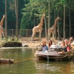 Dierenpark Amersfoort opent 'De Grote Wildernis'