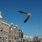 Fotowedstrijd; de mooiste plek van Nederland