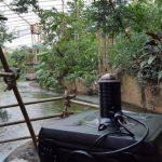 Zieke kinderen virtueel naar WILDLANDS Adventure Zoo Emmen