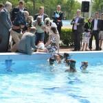 Boerderij levert energie voor zwembad
