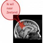 Neuromarketing ingezet om promotie Zeeland te versterken