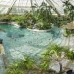 Zwembaden in Flevoland doen het goed op zwembadverkiezing van het jaar