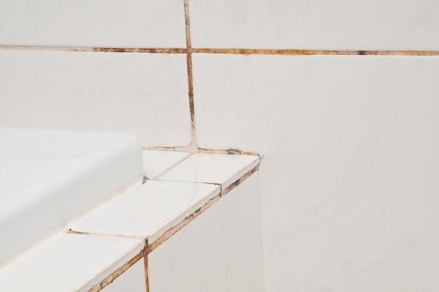 Nieuwe Schimmel Badkamer : Nieuwe technologie zorgt voor oplossing beschimmelde voegen pretwerk