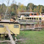 Dierenparken in transitie