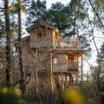 Voorproefje boomhuizen le Bois aux Daims