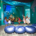Nieuw natuurcentrum in Florida-stijl