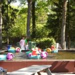 Drenthe populair bij jonge gezinnen