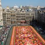Overweldigende respons op Vlaamse subsidies recreatie en toerisme