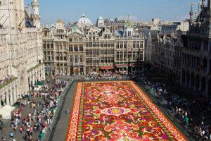 flowercarpet-brussel