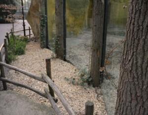 De glazen wanden van de dierenkooien zorgen voor minder belevingsafstand. (zeker voor kinderen)