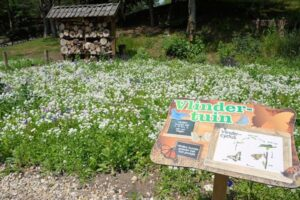 Vlindertuin; positief, leerzaam, maar niet verplichtend