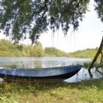 Nederlander gaat vaker op stap in de natuur