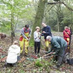 Recordaantal vrijwilligers natuurwerkdag