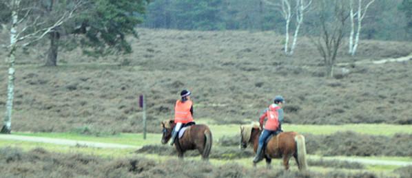paardrijden in utrecht