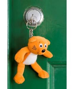 Keyring in door