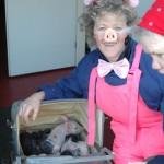 Woensdag: Dag van het plattelandstoerisme