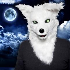 tt mr.-fox-1