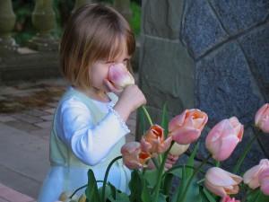 tulpenmeisje
