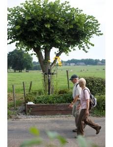 Wandelaars in Zuid-Limburg