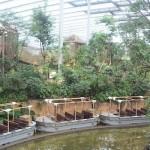 Hoe toekomstgericht zijn de Nederlandse dierentuinen?