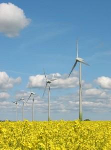 innovatie in schone energie