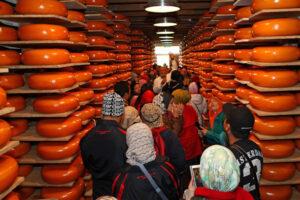 in het kaaspakhuis